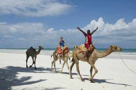 Camel Ride Diani Beach
